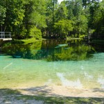 Springs Fever: Season Starts Early in the Suwannee Valley